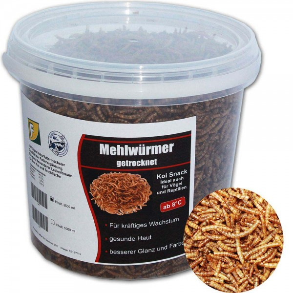 Teichoutlet® Mehlwürmer Koi Snack 400g | © by teichfreund24.de